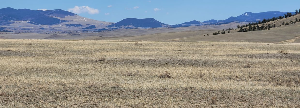 Own 5 Acres in South Park Ranches & Get that Colorado Property You've Been Dreaming About – Only $299 a Month and Power is Across the Street!